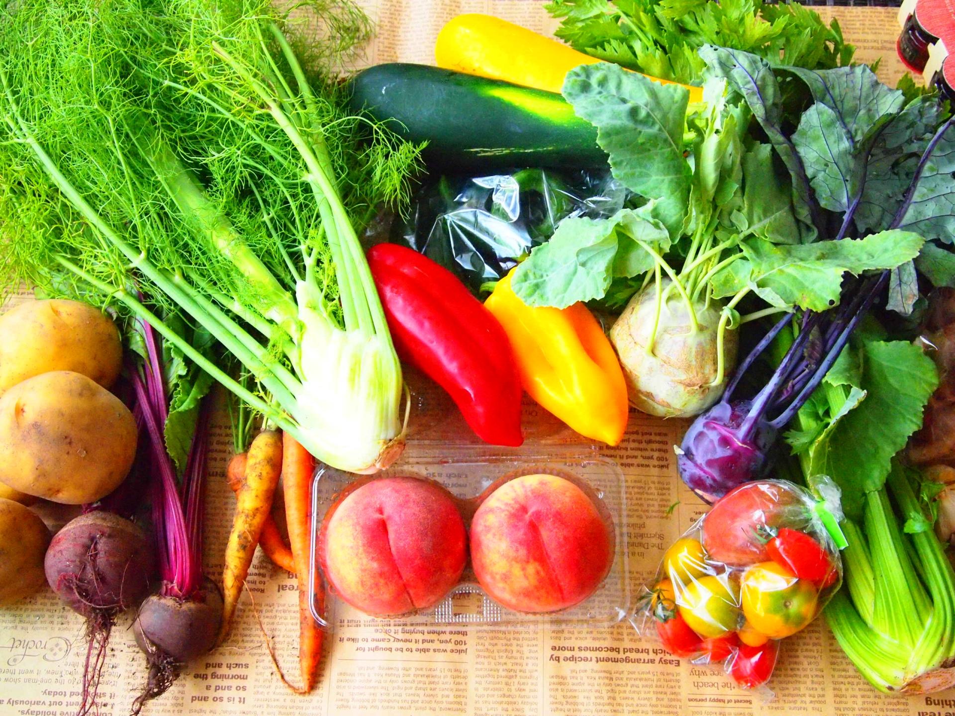 紫外線の意外と知らない食べ物での対策とは?!効果のある食べ物や目への影響は?