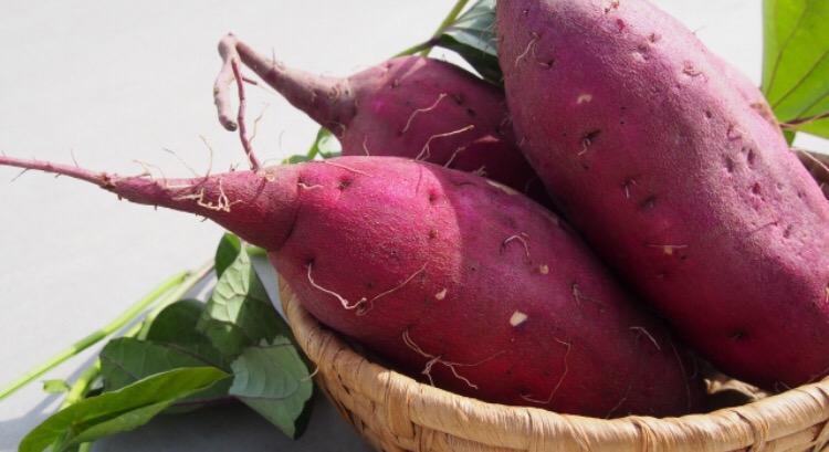 さつまいもには美容効果あり!効果的な食べ方や簡単に焼き芋を作る方法