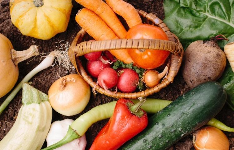 冷え性は食べ物で改善できる!効果的な果物や簡単おすすめレシピを紹介