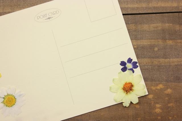 私製はがきで年賀状を作る際の注意点と書き方を紹介